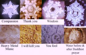 emoto-water-crystals